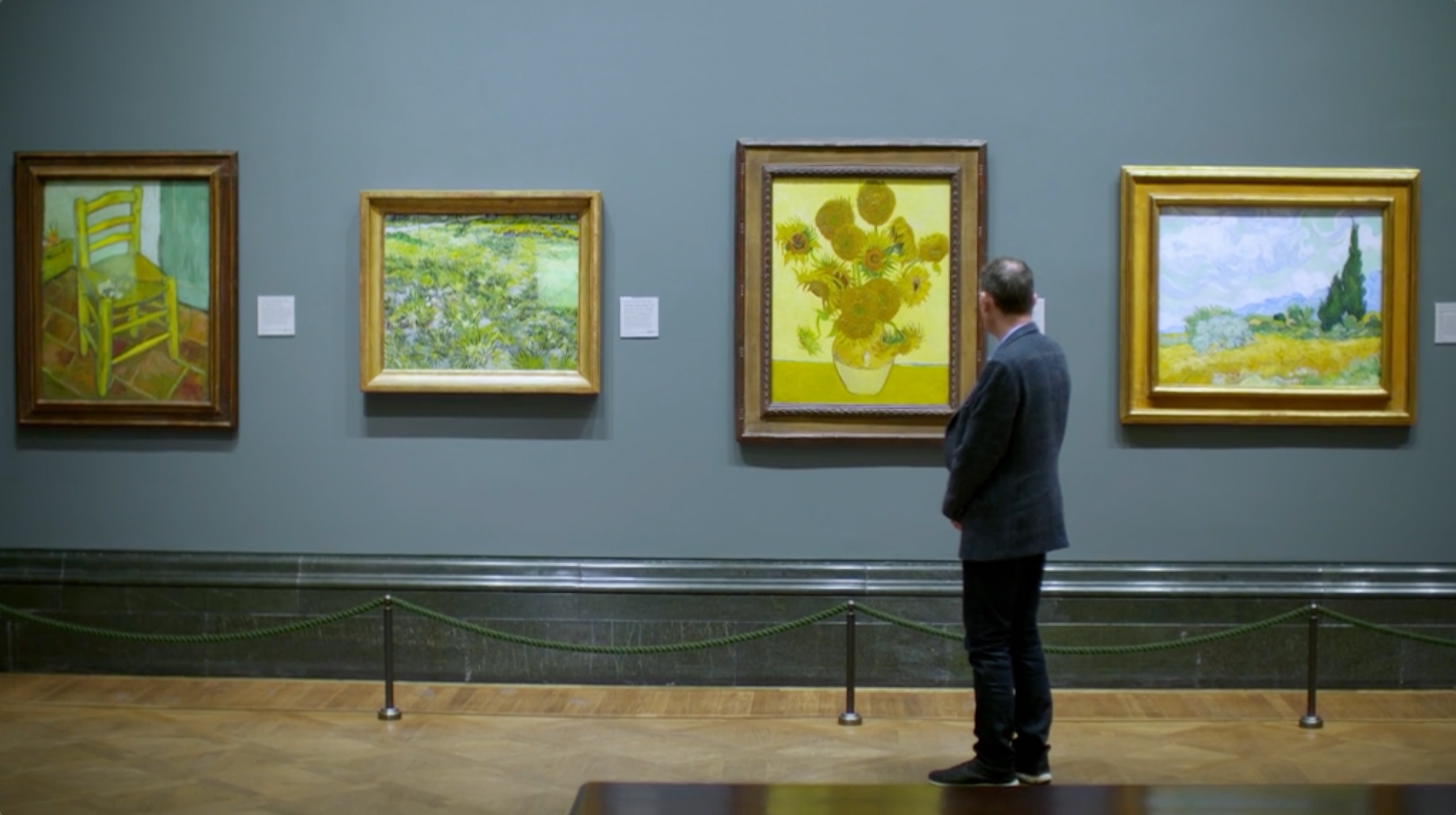 Andrew Marr looking at Sunflowers by Vincent Van Gogh